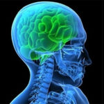 МРТ головного мозга при беременности – диагностика заболеваний на ранних сроках