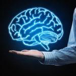 Что показывает МРТ головного мозга без введения контраста: опухоли, отеки, инфекции